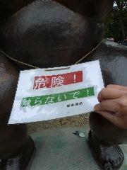 京都府立植物園 バラのチンチン_b0054727_2583318.jpg