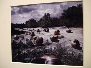 620) af 「フランク・ゴルドブロン写真展『異なるもの奇異なる物』」 4月8日(火)~5月24日(土)_f0126829_22181945.jpg