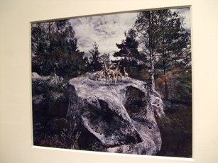 620) af 「フランク・ゴルドブロン写真展『異なるもの奇異なる物』」 4月8日(火)~5月24日(土)_f0126829_22193795.jpg