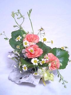 f0141846_1925351.jpg