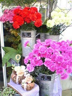Mother\'s Day_e0142585_12301026.jpg