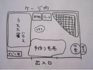 うさぎと帰省〜1日目編〜_c0155208_9573229.jpg