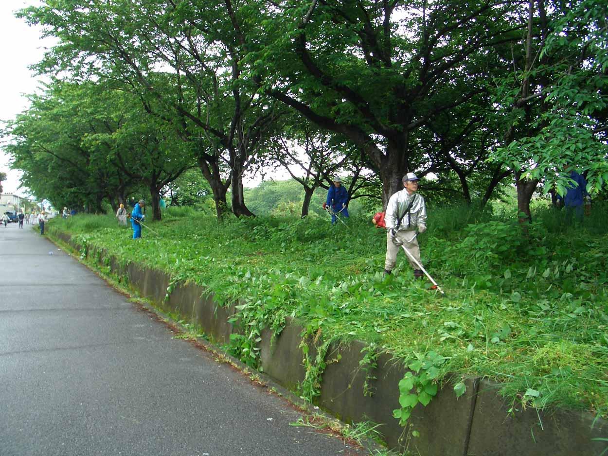 「頭数」がものを言う沼川と田宿川の清掃_f0141310_23472312.jpg