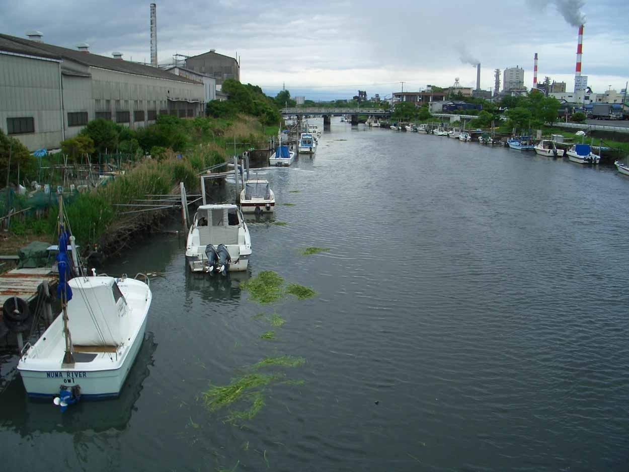 「頭数」がものを言う沼川と田宿川の清掃_f0141310_23521662.jpg