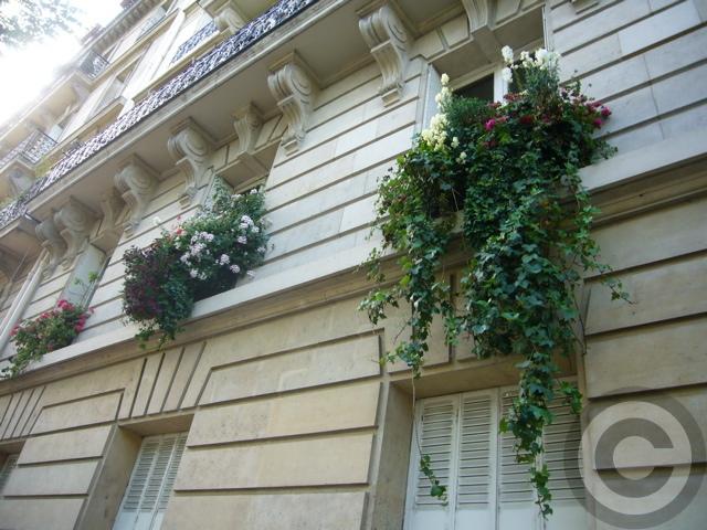 Paris rive gauche; La fleurie. dans Photographies du Paris d'hier et d'aujourd'hui f0063227_2132422
