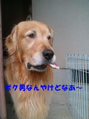 b0127531_12281569.jpg