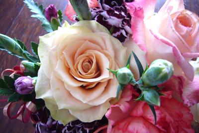5月の薔薇---カメレオン_f0105054_9223974.jpg