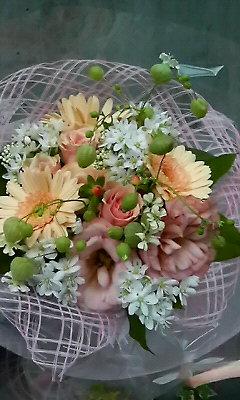 母の日のお礼_c0137266_17141.jpg