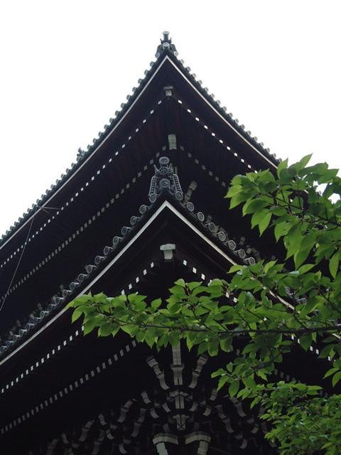 青葉が誘う 新緑の京都!散歩編①_f0029571_01116.jpg