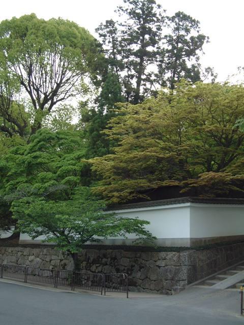 青葉が誘う 新緑の京都!散歩編①_f0029571_041984.jpg