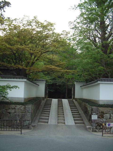 青葉が誘う 新緑の京都!散歩編①_f0029571_052781.jpg