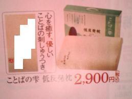 b0098610_4381673.jpg