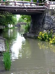 近江八幡_e0110119_21484944.jpg