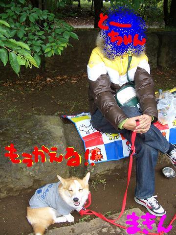 c0134720_2315341.jpg