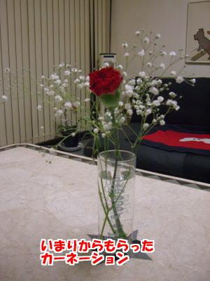 d0020869_15183436.jpg