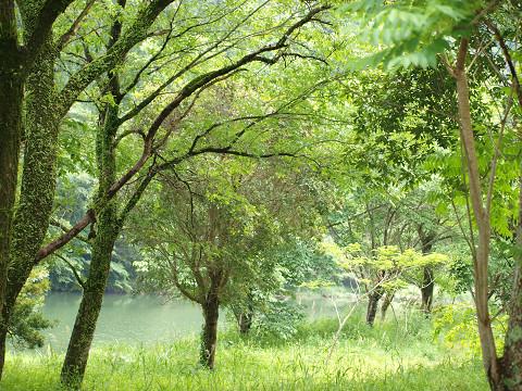湖畔のお散歩_b0135573_20542823.jpg