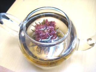カーネーションの花茶 とか_a0091095_2001421.jpg
