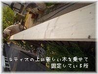 b0074640_14171578.jpg