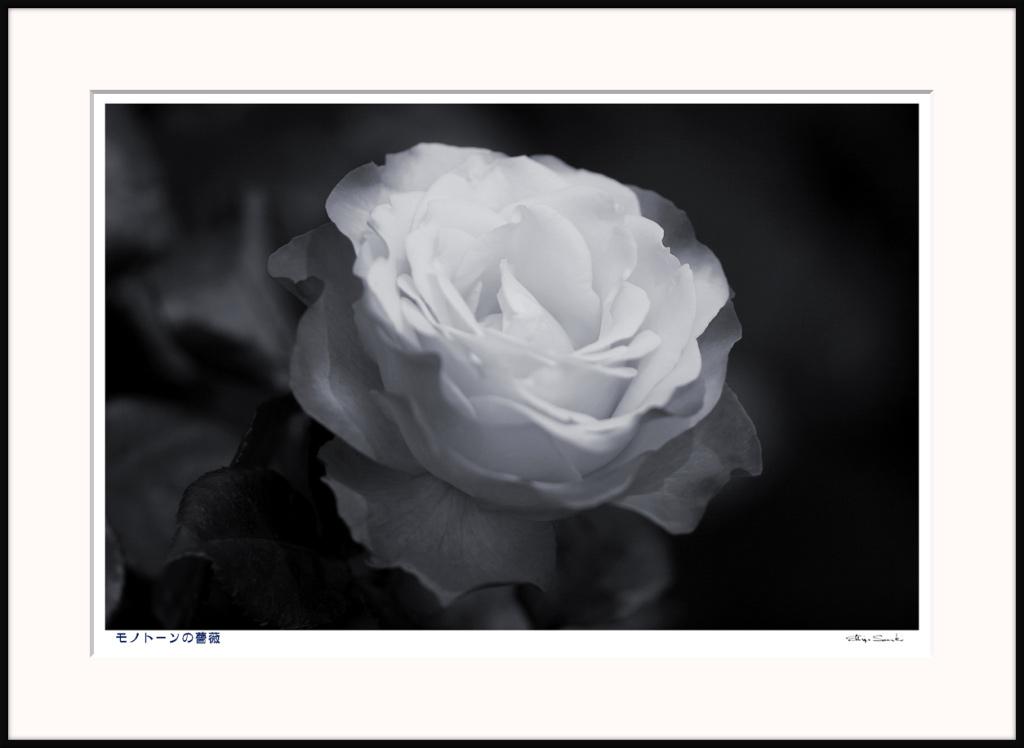 f0160440_10194091.jpg