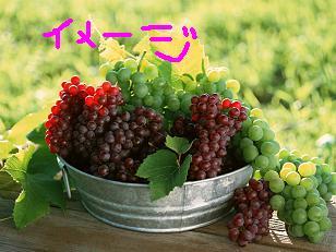 f0161151_20213264.jpg