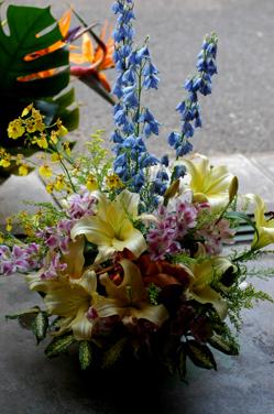 花だらけ~**_a0082146_1491729.jpg