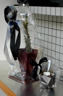 花だらけ~**_a0082146_1521476.jpg