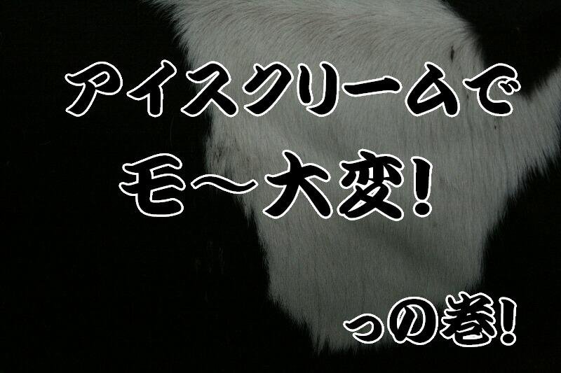 b0110348_2229492.jpg