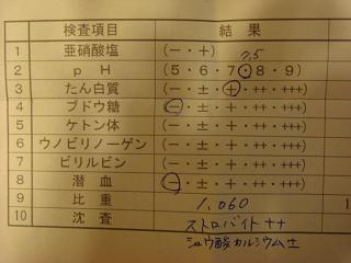 f0046854_20131296.jpg