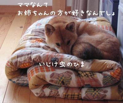 f0068501_2240362.jpg