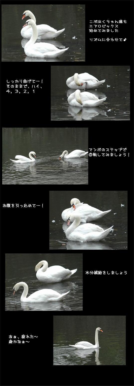 f0012718_8471858.jpg