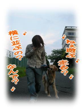 f0109418_0515133.jpg