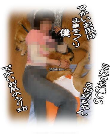 f0109418_06249.jpg