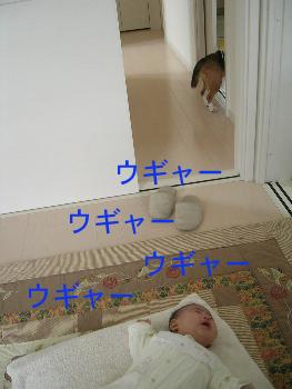 b0104420_1351166.jpg