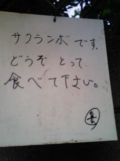 b0091243_132078.jpg