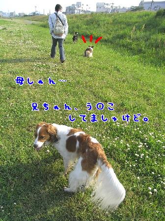 d0013149_8415382.jpg