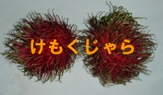 ンゴ♪ンゴ♪大安売り!_f0144385_20123654.jpg