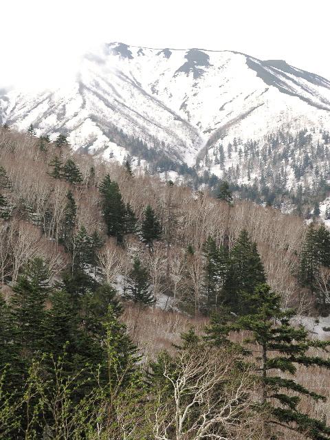 今月のご挨拶「5月連休の十勝岳、残雪の模様を見に行って来ました。」_d0027290_22475725.jpg