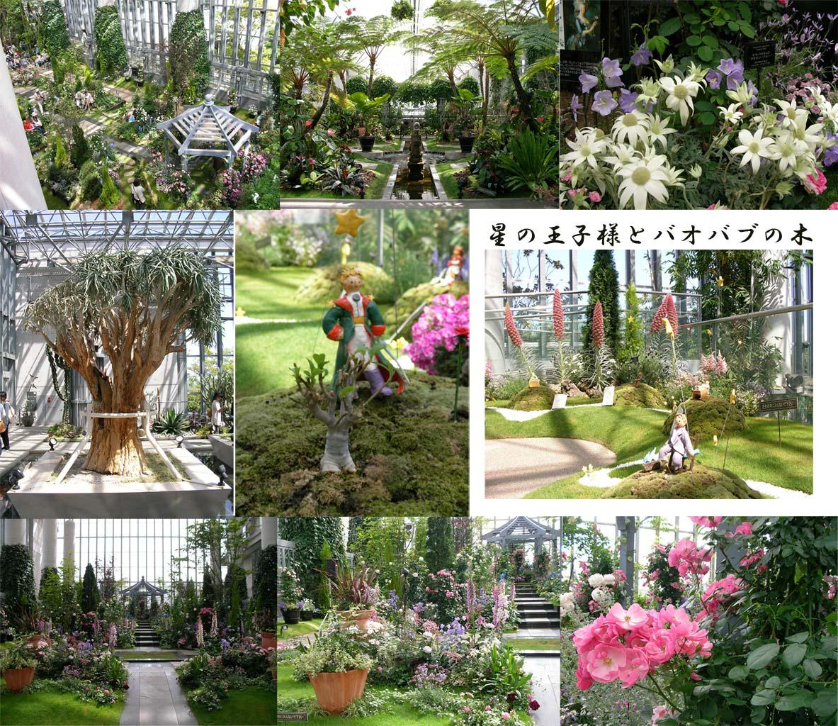 花と緑の空間。_f0045132_16132052.jpg