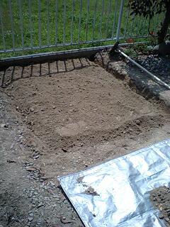 家庭菜園事始_d0028272_14105193.jpg
