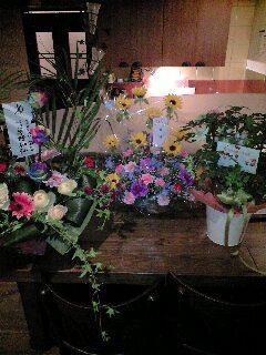 お祝いのお花を頂きました。_e0092612_2273298.jpg