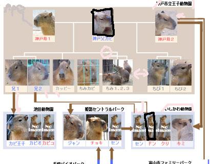 f0138828_1621201.jpg
