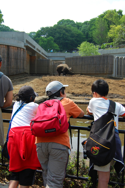 多摩動物公園 チーターの赤ちゃん_a0003650_8501636.jpg