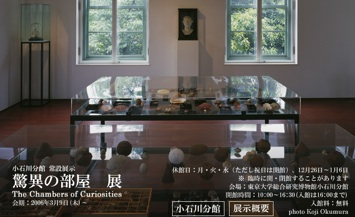 驚異の部屋 展:The Chambers of Curiosities_b0087556_2321719.jpg