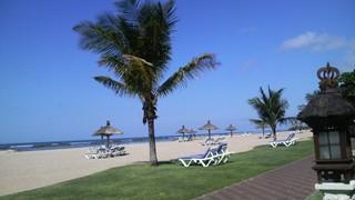 バリ島から戻ってきました_e0088956_021784.jpg