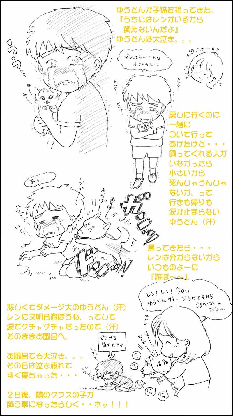子猫事件☆☆☆_f0119369_18581338.jpg