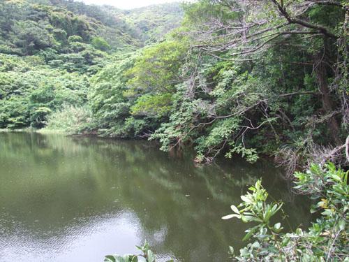 ご主人が愛した加計呂麻島の海_e0028387_23142880.jpg