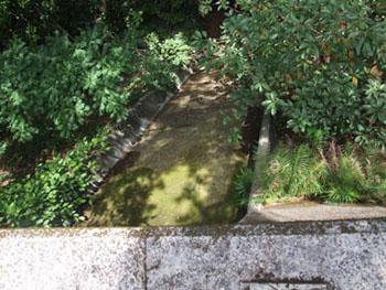 ご主人が愛した加計呂麻島の海_e0028387_2315746.jpg
