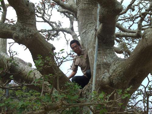 ご主人が愛した加計呂麻島の海_e0028387_23425982.jpg