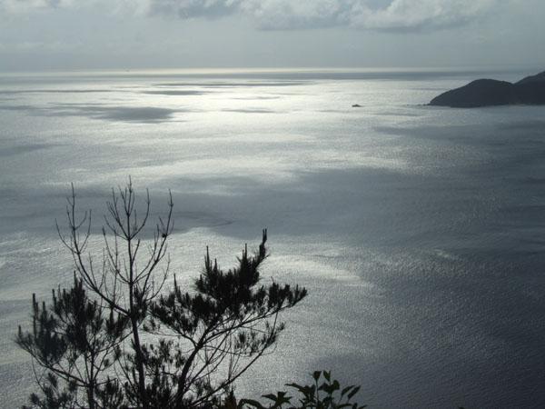 ご主人が愛した加計呂麻島の海_e0028387_23453528.jpg