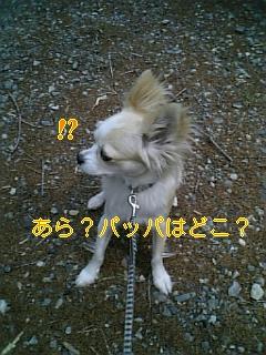 f0148927_18401112.jpg